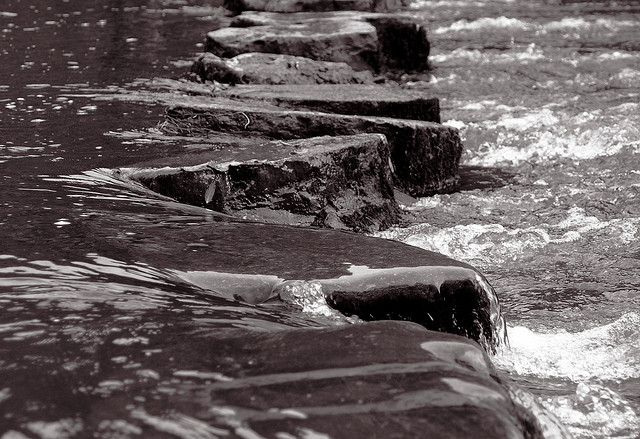 Stepping Stones by Vicki 13